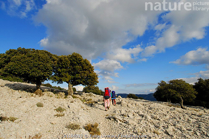 Hikers with backpacks walking through rocky landscape, Sardinia, Italy  ,  EUROPE,LANDSCAPES,LEISURE,PEOPLE,WALKING , Supramonte NP, national park  ,  Fabio Liverani
