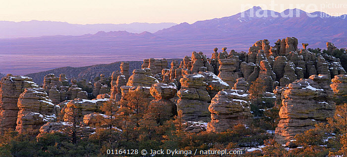 Spires of Chiricahua National Monument sprinkled with early snow, double summit of Dos Cabezas Mt and Sulphur Springs Valley in background, Arizona, USA  ,  LANDSCAPES,NORTH AMERICA,RESERVE,ROCK FORMATIONS,USA,Geology  ,  Jack Dykinga