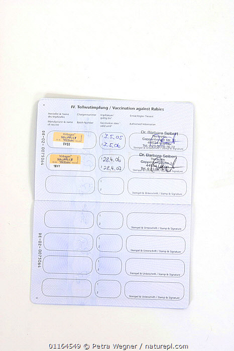 Vaccination card for pets, page showing vaccination for rabies, Germany  ,  CUTOUT,paper,pedigree,PETS,Studio,Travel,VERTICAL,passport,Dogs,Canids,Europe  ,  Petra Wegner