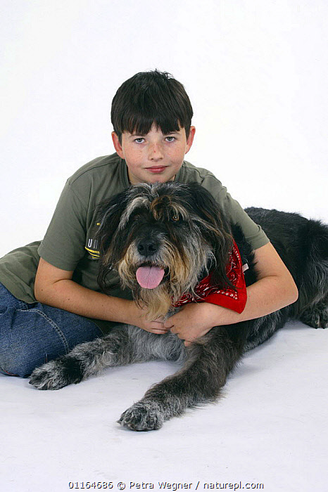 Boy and Mixed Breed Dog with neckerchief  ,  AFFECTIONATE,CHILD,CHILDREN,CUTOUT,DOGS,FRIENDS,half breed,lying down,mongrel,mutt,panting,PEOPLE,PETS,Studio,VERTEBRATES,VERTICAL,concepts,Canids  ,  Petra Wegner