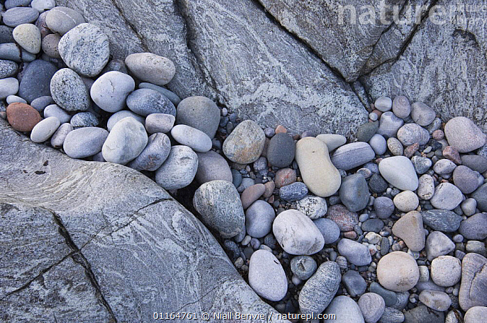 Water-smoothed Lewisian gneiss pebbles on beach, Tiree, Scotland  ,  ARTY SHOTS,BEACHES,BLUE,COASTS,COLD,EROSION,EUROPE,GEOLOGY,ROCKS,stones,UK,United Kingdom,British, United Kingdom, United Kingdom , Inner Hebrides,SCOTLAND  ,  Niall Benvie