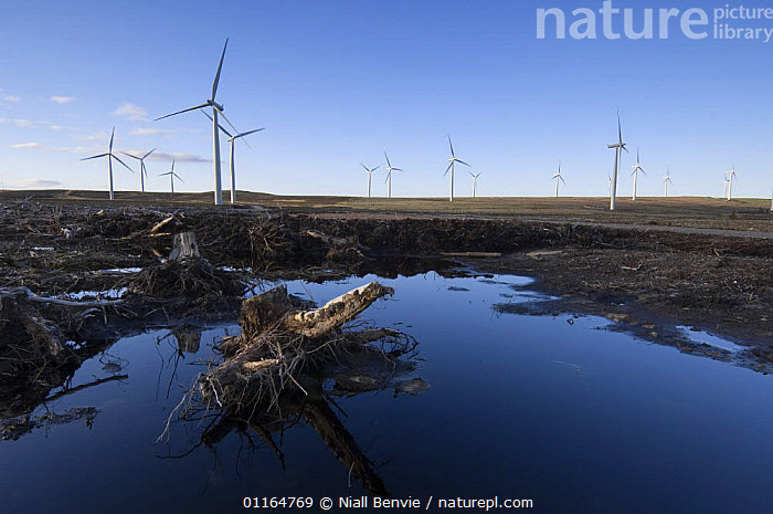 Recreation of deep peat bog at windfarm, Scotland UK  ,  BOGS,CONSERVATION,electricity,ENERGY,EUROPE,HABITAT,LANDSCAPES,power,renewable,UK,WATER,wind turbines,United Kingdom,Wetlands,British,Weather  ,  Niall Benvie