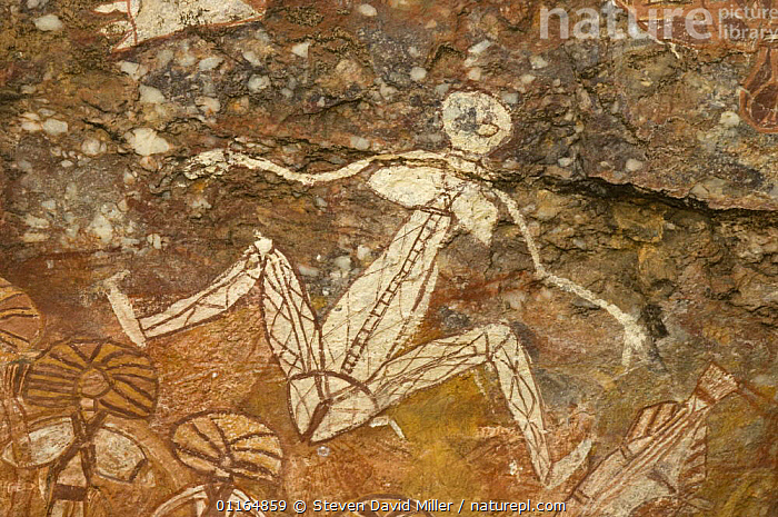 Rock art depicting female figure, Kakadu National Park, Northern Territory, Australia - painted by Nayombolmi (Barramundi Charlie)., ART,AUSTRALASIA,AUSTRALIA,ROCKS, Steven David Miller