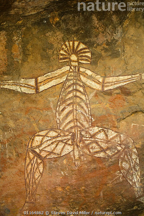Rock art depicting human figure, Kakadu National Park, Northern Territory, Australia, ART,AUSTRALASIA,AUSTRALIA,ROCKS,VERTICAL, Steven David Miller