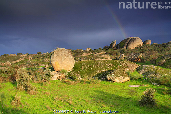 Rock formations, Los Barruecos NP, C�ceres, Extremadura, Spain, BOULDER,EUROPE,LANDSCAPES,NP,SPAIN,Geology,National Park, Jose B. Ruiz