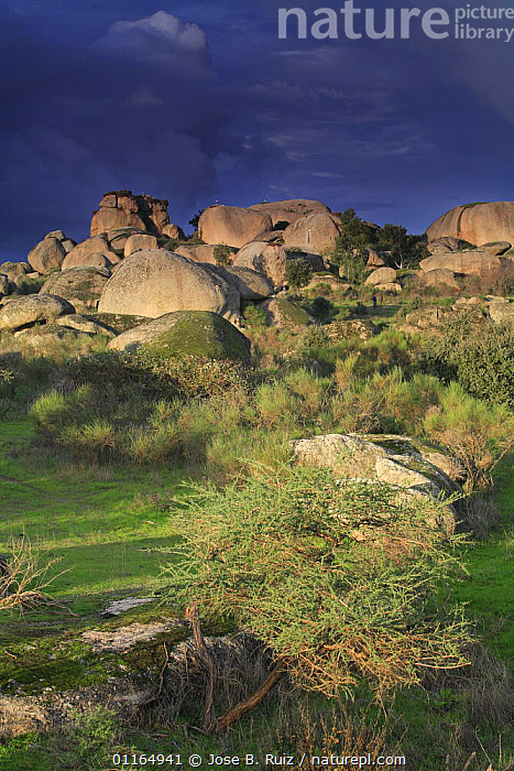 Rocky landscape with grey clouds, Los Barruecos NP, C�ceres, Extremadura, Spain  ,  EUROPE,LANDSCAPES,NP,ROCK FORMATIONS,ROCKS,VERTICAL,Geology,National Park  ,  Jose B. Ruiz