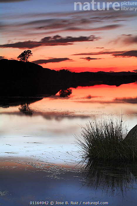 Sunset and reflection in water, Los Barruecos NP, C�ceres, Extremadura, Spain, EUROPE,LANDSCAPES,NP,SUNSET,VERTICAL,National Park, Jose B. Ruiz