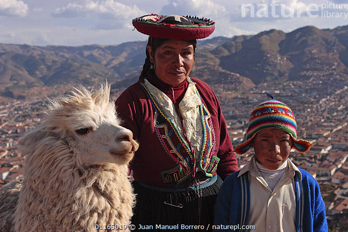 Indian woman and boy in traditional dress with llama (Lama glama) Cusco, Peru 2006., ANDES,CULTURES,LANDSCAPES,PEOPLE,PERU,PORTRAITS,SOUTH AMERICA,SOUTH-AMERICA, Juan Manuel Borrero