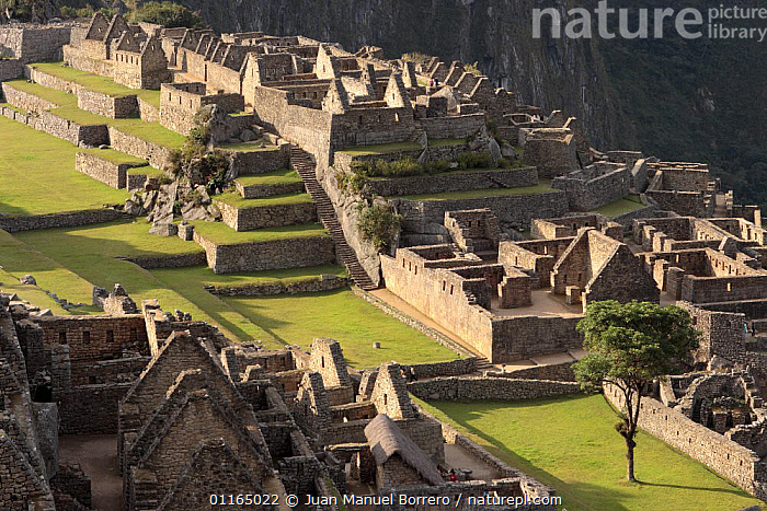 Inca ruins, Machu Picchu, Peru, 2006  ,  ANCIENT,ANDES,ATTRACTION,BUILDINGS,CIVILIZATIONS,CULTURES,SOUTH AMERICA,SOUTH-AMERICA  ,  Juan Manuel Borrero