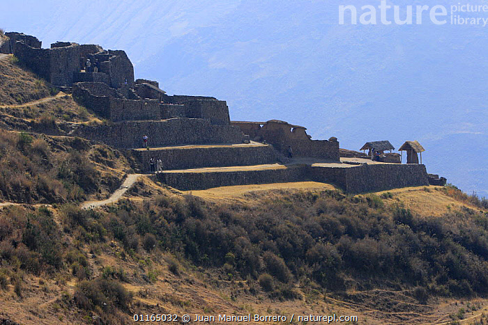 Archaeological Park of Pisac, Sacred Valley, Peru 2006.  ,  ANDES,BUILDINGS,CULTURES,LANDSCAPES,PERU,RUINS,SOUTH AMERICA,SOUTH-AMERICA  ,  Juan Manuel Borrero