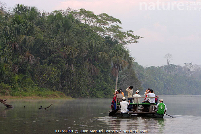 Tourists on raft in Sandoval Lake, observing wildlife, Tambopata NP, Peru 2006., BINOCULARS,ECOTOURISM,LANDSCAPES,NP,PEOPLE,SOUTH AMERICA,TOURSIM,TROPICAL RAINFOREST,WATER,WILDLIFE WATCHING,National Park,SOUTH-AMERICA, Juan Manuel Borrero