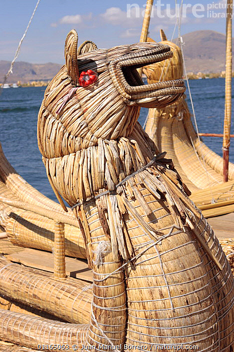 Detail of totora reed boat in Uros Floating reed Islands, Lake Titicaca, Peru 2006.  ,  ANDES,BOATS,SOUTH AMERICA,TRADITIONAL,VERTICAL,SOUTH-AMERICA  ,  Juan Manuel Borrero