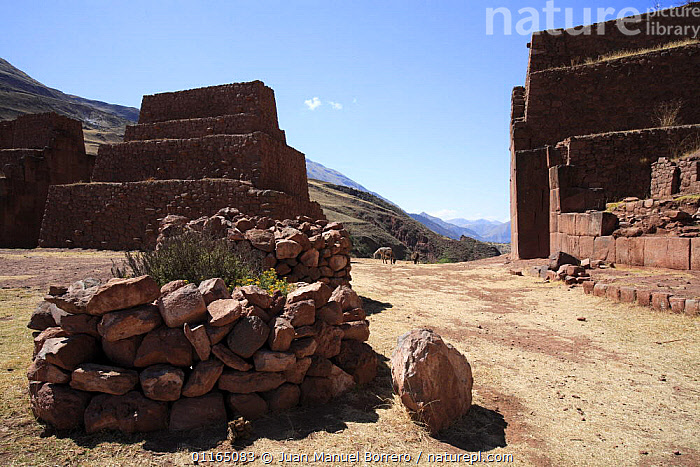 Ruins and stone walls in Archaeological Park of Rumi Colca, Peru 2006.  ,  ANCIENT,ANDES,BUILDINGS,INCA,RUINS,SOUTH AMERICA,STONE,SOUTH-AMERICA  ,  Juan Manuel Borrero