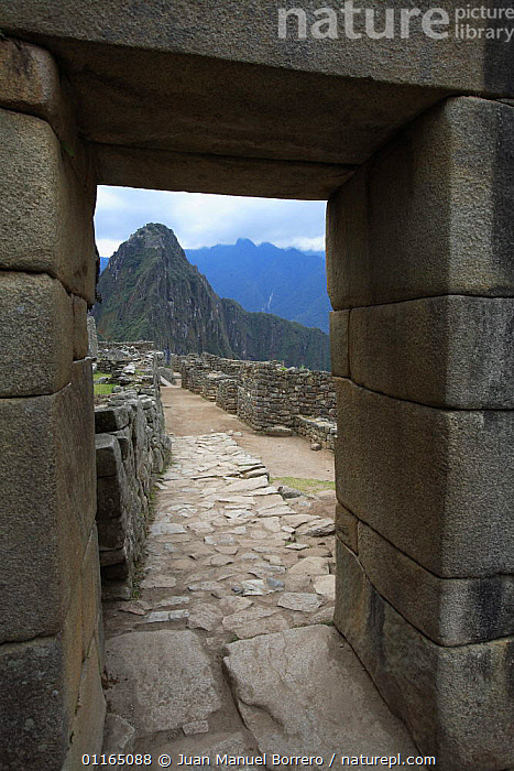 View of Huuauna Picchu through gap in ancient Inca stone wall, Machu Picchu, Peru 2006.  ,  ANCIENT,ANDES,ARTY,CENTRAL AMERICA,CULTURES,INCA,LANDSCAPES,MOUNTAINS,SOUTH AMERICA,VERTICAL,SOUTH-AMERICA  ,  Juan Manuel Borrero