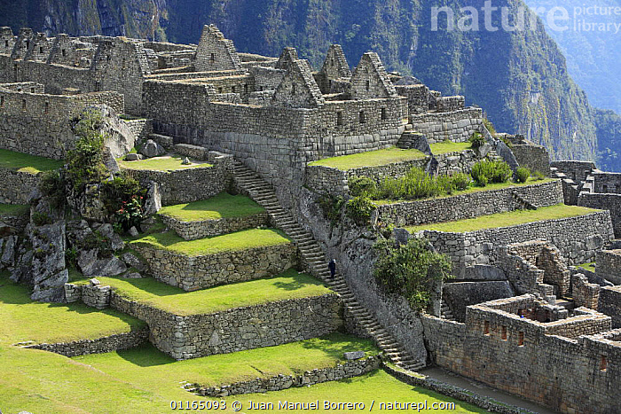 Inca ruins, Machu Picchu, Peru 2006., ANCIENT,ANDES,BUILDINGS,CIVILISATIONS,CULTURES,LANDSCAPES,RUINS,SOUTH AMERICA,SOUTH-AMERICA, Juan Manuel Borrero
