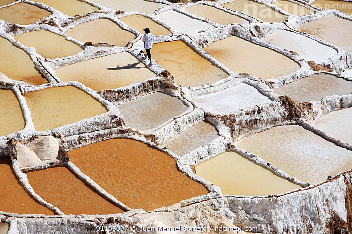 Man walking along wall in salt mines, Maras, Peru 2006., AERIALS,ANCIENT,ANDES,INCA,INDUSTRY,LANDSCAPES,MINERALS,PATTERNS,PEOPLE,POOLS,SOUTH AMERICA,SOUTH-AMERICA, Juan Manuel Borrero
