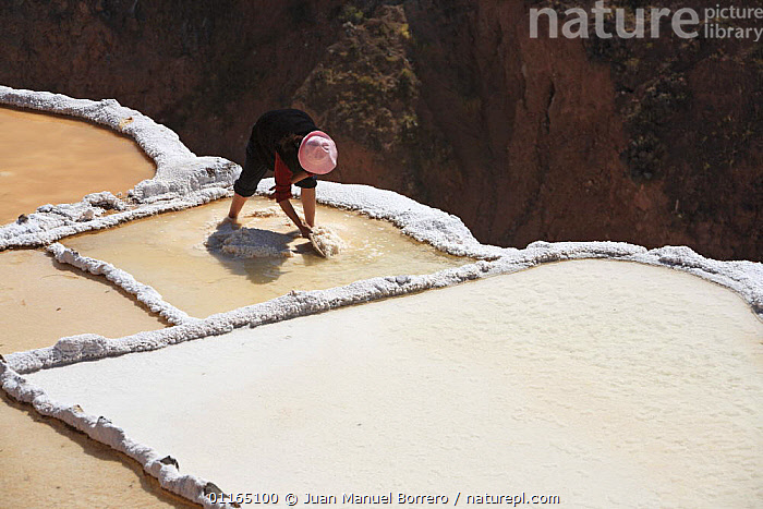 Indian woman working on salt pool, Maras, Peru 2006.  ,  ANCIENT,ANDES,INCA,INCAS,INDUSTRY,MINERALS,MINES,PEOPLE,POOLS,SOUTH AMERICA,SOUTH-AMERICA  ,  Juan Manuel Borrero
