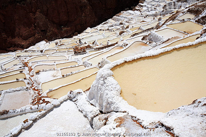 Salt mine terraces, Maras, Peru 2006.  ,  ANCIENT,ANDES,INCA,INCAS,INDUSTRY,MINERALS,MINES,POOLS,SOUTH AMERICA,SOUTH-AMERICA  ,  Juan Manuel Borrero