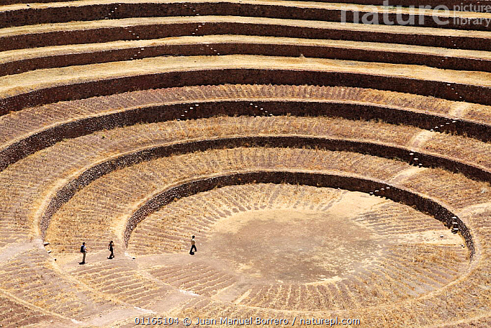 Circular terraces at ancient Inca site of  Moray, Sacred Valley, Peru 2006.  ,  ANCIENT,ANDES,CIRCLE,INCA,INCAS,PEOPLE,RUINS,SOUTH AMERICA,SOUTH-AMERICA  ,  Juan Manuel Borrero