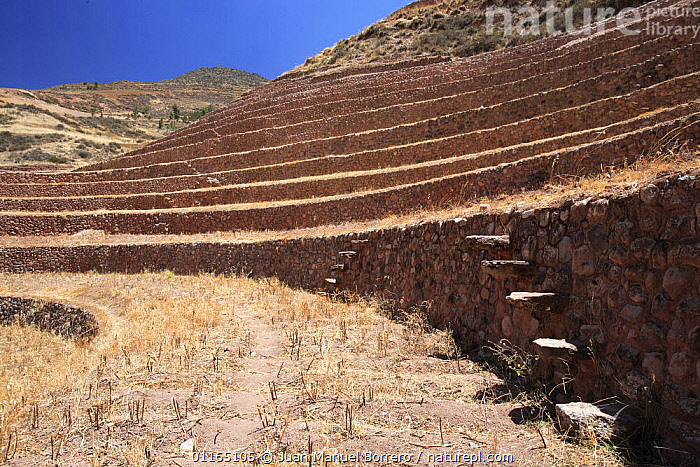 View from the bottom of the circular terraces at ancient  Inca site at Moray, Sacred Valley, Peru 2006.  ,  ANCIENT,ANDES,RUINS,SOUTH AMERICA,SOUTH-AMERICA  ,  Juan Manuel Borrero