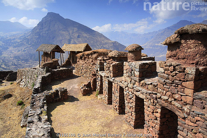 Inca ruins at Pisac, Sacred Valley, Peru 2006., ANCIENT,ANDES,BUILDINGS,INCAS,LANDSCAPES,MOUNTAINS,RUINS,SOUTH AMERICA,SOUTH-AMERICA, Juan Manuel Borrero