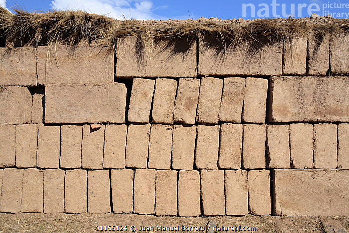 Sun-dried bricks, Peru 2006., ANDES,CONSTRUCTION,SOUTH AMERICA,TRADITIONAL,SOUTH-AMERICA, Juan Manuel Borrero