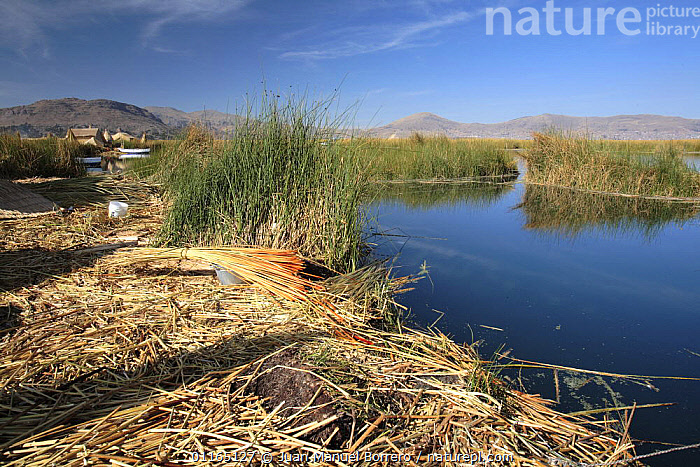 Uros Floating reed Islands, Lake Titicaca, Peru, ANDES,LAKES,LANDSCAPES,MOUNTAINS,SOUTH AMERICA,SOUTH-AMERICA, Juan Manuel Borrero