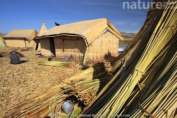 Huts on Uros Floating reed Islands, Lake Titicaca, Peru, ANDES,CENTRAL AMERICA,CULTURES,HOMES,PEOPLE,SOUTH AMERICA,TRADITIONAL,TRIBES,SOUTH-AMERICA, Juan Manuel Borrero