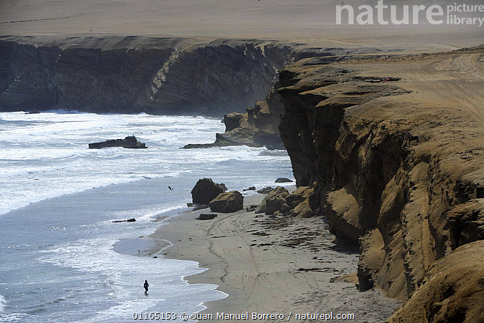 Pacific coast, Paracas National Reserve, Peru  ,  CLIFFS,COASTS,LANDSCAPES,SOUTH AMERICA,Geology,SOUTH-AMERICA  ,  Juan Manuel Borrero