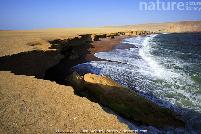 Pacific coast, Paracas National Reserve, Peru  ,  CLIFFS,COASTS,DESERTS,LANDSCAPES,SEA,SOUTH AMERICA,Geology,SOUTH-AMERICA  ,  Juan Manuel Borrero
