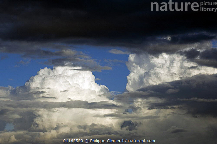 Cumulus congestus clouds over land, Belgium  ,  CLOUDS,EUROPE,RAIN,SKY,STORMS,WEATHER,Catalogue1  ,  Philippe Clement
