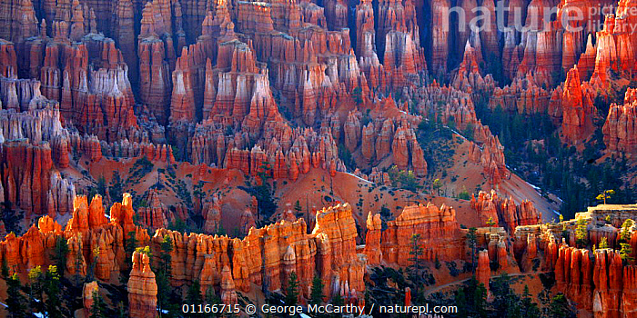 Nature Picture Library - Panoramic view of rock formations