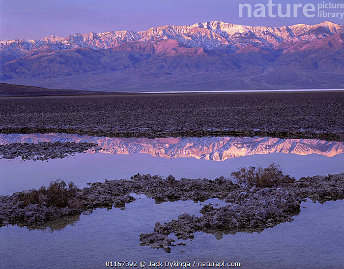 Telescope Peak reflected in a highly salty pool at dawn, Badwater Basin, Death Valley National Monument, California  ,  California,DAWN,LANDSCAPES,MOUNTAINS,NORTH AMERICA,REFLECTIONS,SALT,salt pans,SNOW,SUNRISE,USA,valleys,WATER  ,  Jack Dykinga