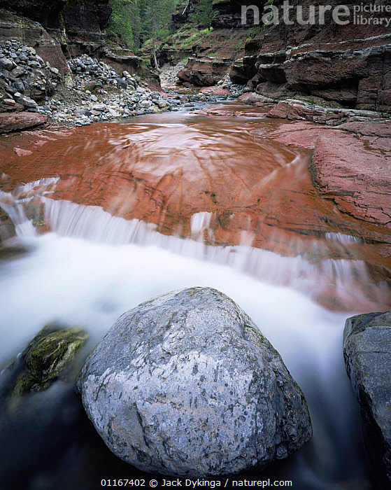 Boulder in middle of Redrock Canyon with water flowing around it, Waterton Lakes National Park, Canada  ,  blur,CANADA,canyons,GEOLOGY,LANDSCAPES,MOVEMENT,NORTH AMERICA,NP,RED,RIVERS,ROCKS,valleys,VERTICAL,National Park , blurred  ,  Jack Dykinga