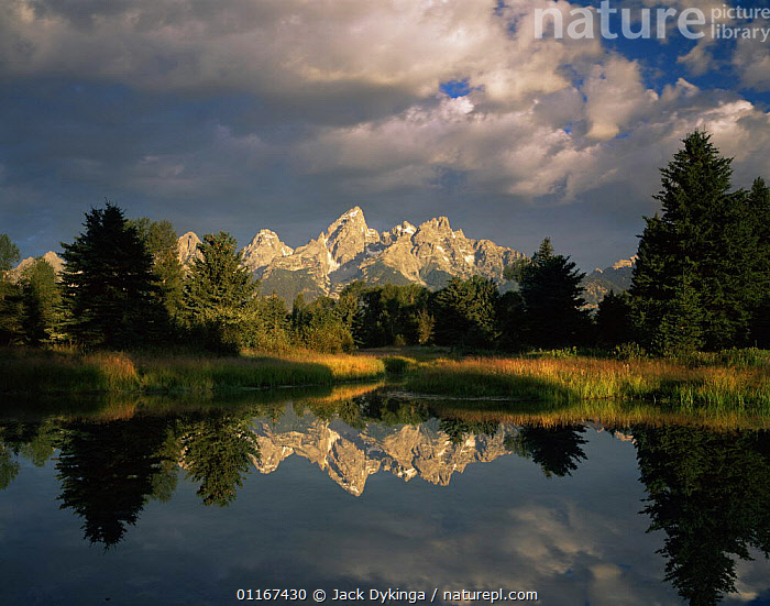 Teton Mountain range and sky reflected in the Snake River's Pools, Grand Teton National Park, Wyoming, USA  ,  CLOUDS,LAKES,LANDSCAPES,MOUNTAINS,NORTH AMERICA,NP,PINES,REFLECTIONS,USA,WATER,WETLANDS,WYOMING,Weather,National Park ,Rocky Mountains,  ,  Jack Dykinga