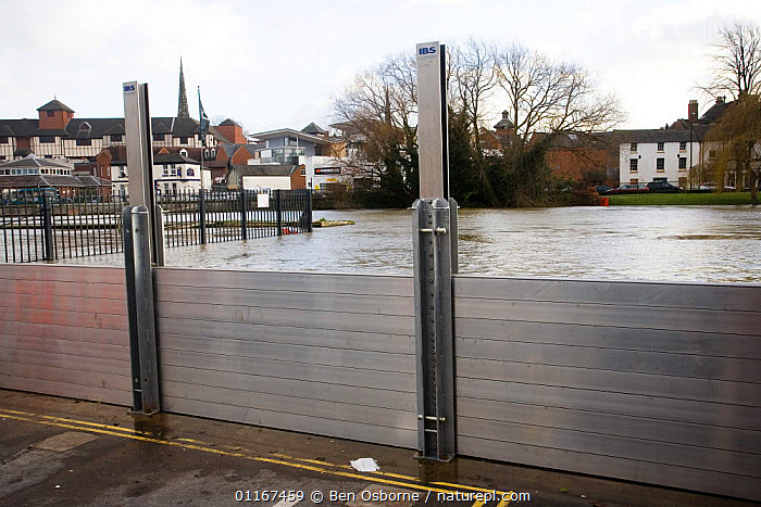 Flood defence barrier keeping flood waters at bay, River Severn, Shrewsbury, Shropshire, UK, winter 2006/7  ,  CITIES,EUROPE,FLOODING,FLOODS,GLOBAL WARMING,RIVERS,UK,WEATHER,United Kingdom,British,ENGLAND  ,  Ben Osborne