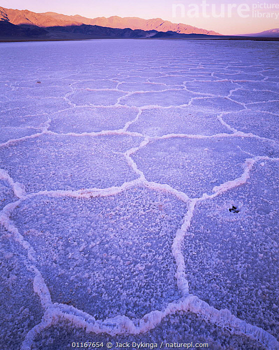 Salt lake with crystalised patterns, Panamint Mountains in background, dawn, Death Valley National Park, California  ,  California,dry,LAKES,LANDSCAPES,north america,NORTH AMERICA,NP,salt lakes,SUNRISE,USA,valleys,VERTICAL,National Park  ,  Jack Dykinga