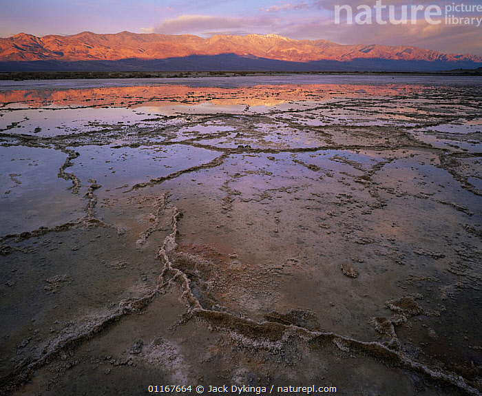 Salt crystal formations in partially crystalised salty lake, Panamint Range in distance with dawn light reflected in water, Death Valley National Park, California  ,  California,LAKES,LANDSCAPES,MOUNTAINS,NORTH AMERICA,NP,SALT,SUNRISE,USA,National Park  ,  Jack Dykinga