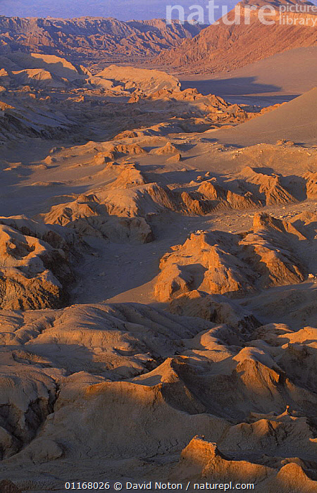 The Atacama Desert, Valle de la Luna, nr San Pedro de Atacame, Atacama, Chile  ,  CANYONS,CHILEAN,ENVIRONMENT,EROSION,GEOLOGY,LANDSCAPES,SOUTH AMERICA,VERTICAL,SOUTH-AMERICA  ,  David Noton