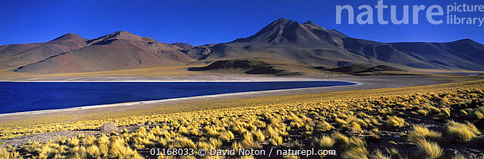 Laguna Miscanti, the Andes, Northern Chile  ,  ANDES,DESERTS,LAKES,LANDSCAPES,MOUNTAINS,PANORAMIC,RANGE,SOUTH AMERICA,SOUTH-AMERICA  ,  David Noton