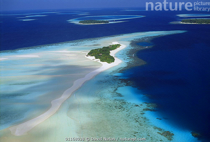Aerial of South Male Atoll, Maldives  ,  AERIALS,ASIA,BEACHES,BLUE,COASTS,CORAL ATOLLS,ISLANDS,LANDSCAPES,SAND,SEA,TROPICAL,WATER,INDIAN OCEAN ISLANDS  ,  David Noton