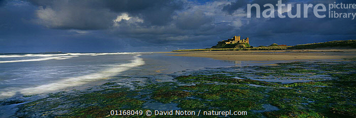 Dusk on the beach at Bamburgh Castle, Northumbria, England, UK  ,  CASTLES,CLOUDS,COASTS,EUROPE,LANDSCAPES,PANORAMIC,REFLECTIONS,UK,WAVES,United Kingdom,Weather,British,ENGLAND  ,  David Noton