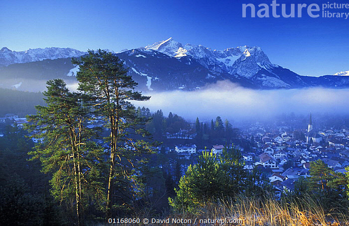 The Zugspitze, Garmish, Partenkirchen, Bavaria, Germany  ,  BUILDINGS,EUROPE,LANDSCAPES,MIST,MOUNTAINS,SNOW,TOWNS,TREES,Plants  ,  David Noton