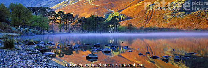 Buttermere at dawn, Lake District National Park, Cumbria, England, UK  ,  COUNTRYSIDE,DAWN,EUROPE,HILLS,LAKES,LANDSCAPES,MOUNTAINS,PANORAMIC,PEACEFUL,REFLECTIONS,ROCKS,STILL,UK,WATER,United Kingdom,Concepts,British,ENGLAND  ,  David Noton