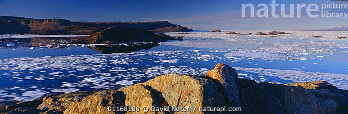 Pack ice on the move im Alexandra Fjord, Ellesmere Island, Nunavut, Arctic Canada  ,  ARCTIC,CANADA,CLIFFS,COASTS,FJORDS,ICE,LAKES,LANDSCAPES,NORTH AMERICA,PANORAMIC,ROCKS,WATER,WILDERNESS,Geology  ,  David Noton