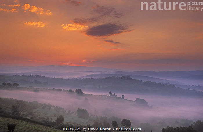 Tuscan dawn from Barberino Val d'Elsa, Chianti, Tuscany, Italy  ,  ATMOSPHERIC,COUNTRYSIDE,EUROPE,FARMLAND,FIELDS,HILLS,LANDSCAPES,MIST,PEACEFUL,SUNRISE,Concepts  ,  David Noton