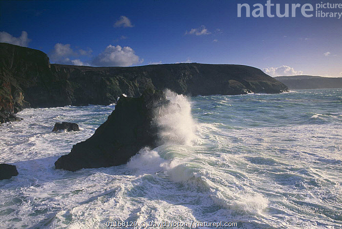 Cligga Point, nr Perranporth, Cornwall, England, UK  ,  CLIFFS,COASTS,EUROPE,LANDSCAPES,ROCKS,SEA,UK,WAVES,United Kingdom,Geology,British,ENGLAND, United Kingdom, United Kingdom  ,  David Noton