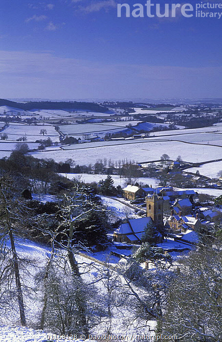 Winter, Corton Denham in the snow, Somerset, England, UK  ,  CHURCHES,COUNTRYSIDE,EUROPE,FARMLAND,FIELDS,LANDSCAPES,UK,VERTICAL,VILLAGES,United Kingdom,British,ENGLAND  ,  David Noton