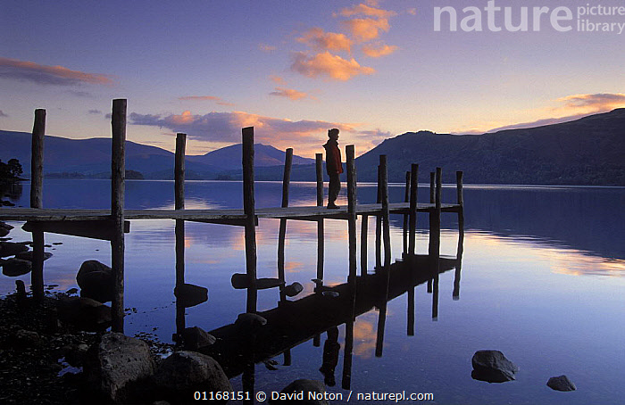 Derwentwater at dawn, Brandelhow Bay, Lake District National Park, Cumbria, England, UK  ,  DAWN,EUROPE,JETTY,LAKES,LANDSCAPES,PEACEFUL,PEOPLE,REFLECTIONS,SILHOUETTES,UK,WATER,United Kingdom,Concepts,British,ENGLAND  ,  David Noton