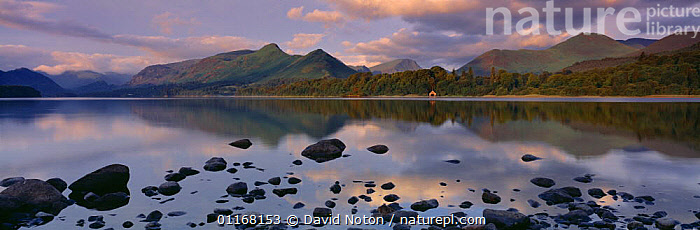 The Cat's Bells and Derwentwater at dawn from nr Keswick, Lake District NP, Cumbria, England, UK  ,  DAWN,EUROPE,LAKES,LANDSCAPES,MOUNTAINS,PANORAMIC,PEACEFUL,REFLECTIONS,RESERVE,UK,United Kingdom,Concepts,British,ENGLAND  ,  David Noton